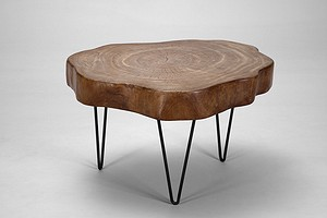 """Tree trunk table"""